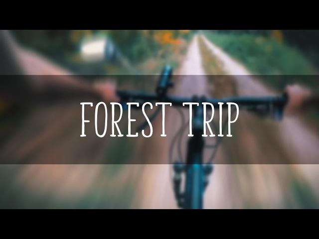 Куди нас трясця занесло!? / Лісова покатушка / Forest bike ride / Лесная велопоездка