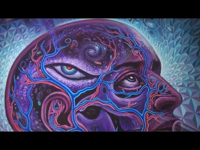 СУПЕР Лекция про Классические Галлюциногены Психоделики LSD Каннабиноиды Грибы Аяуаска Мозг