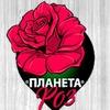 Планета Роз Цветы Розы Доставка в Витебск