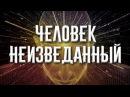 Д Перетолчин В Кучеренко А Кучеренко Что скрывает сознание