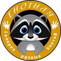 Логотип *ЕнотнаЯ* галерея ручных енотов г.Уфа