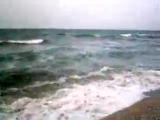 Аробатская Стрелка 2007 - Дикари
