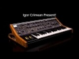 Moog Subsequent 37 Sound 892 2 Short