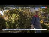 Новости на «Россия 24»  •  Семья из Германии перебралась на ПМЖ в Россию из-за