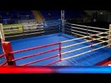 Чемпионат Московской области по боксу среди мужчин и женщин г. Егорьевск день 3