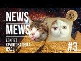 NEWS MEWS #3  Ежегодная пресс конференция