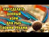 ДОННЫЙ КОРМ ДЛЯ РЫБОК СВОИМИ РУКАМИ. BOTTOM FEED FOR FISH DIY