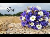 For You With Love (Gheorghe Zamfir - Mattinata)