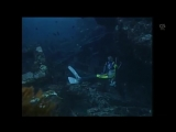 scuba drowning.mp4