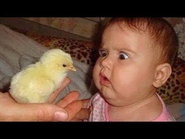 Смешные Дети и Животные! Обхохочешься!