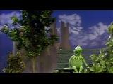 Pogo Kermit Clouds (Sesame Street Remix)