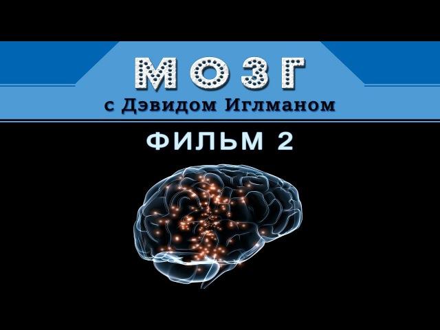 Мозг с Дэвидом Иглманом | Фильм 2 | Что меня создаёт? || Док. Фильм HD 720p
