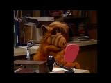 Alf Quote Season 2 Episode 14_А я