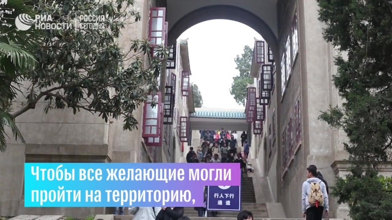 Цветение сакуры в Китае
