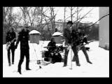 Тараканы! - 36.6 (feat. Евгений Хавтан)