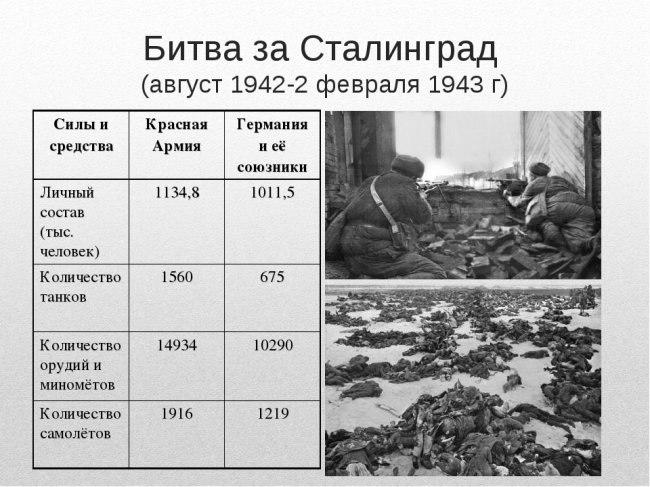 Интересные факты о Волгограде, изображение №6
