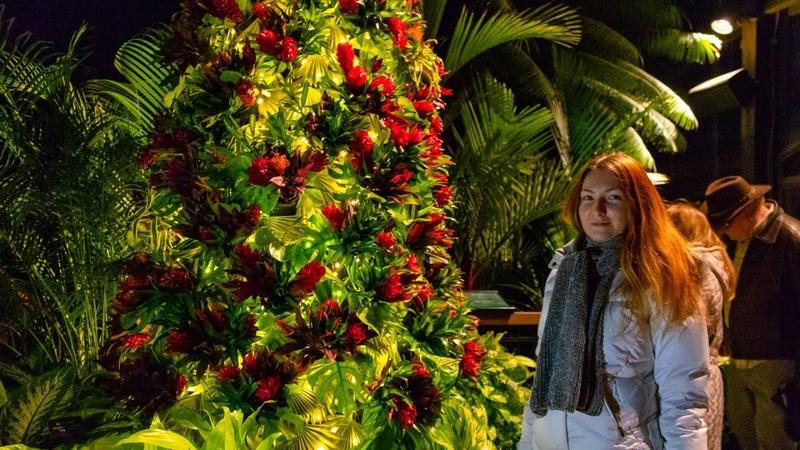 Лонгвуд Гарденс - Сады Дюпона на Рождество 🎄✨