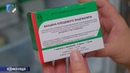 Медики приглашают горожан на ревакцинацию от клещевого энцефалита