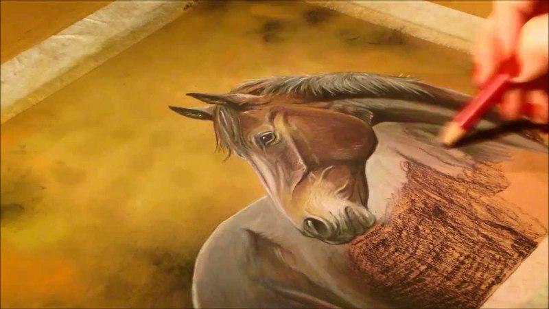 Horse in pastel by Eija Halonen
