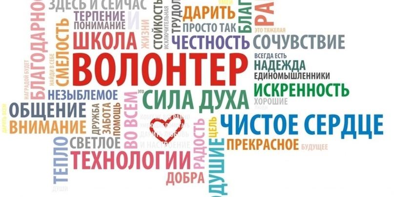 Картинки по запросу Международный день добровольцев во имя экономического и социального развития