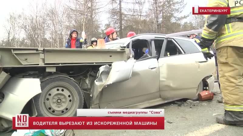 Водителя вырезают из искореженной машины Дорожный ОленьlRoad Deer