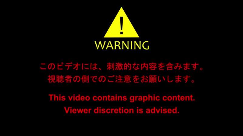 【自主制作アニメ】コマ撮りホラー 化けヤモリ(3-5) - Horror Stop Motion Animation.mp4