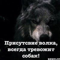 Гаджиев Беслан