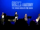 Grey's Anatomy Benefit Concert - Justin Chambers - Young Folks (March 18,2012)