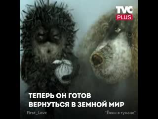 Теория скрытого смысла мультфильма Ёжик в тумане