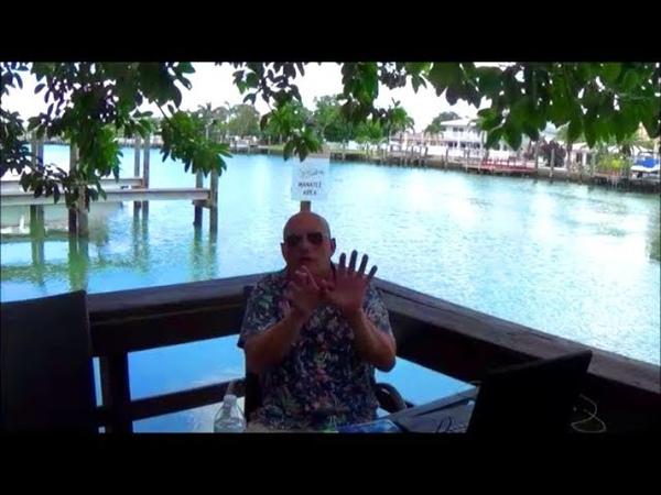 Белые врут в пользу чёрных.Толерантность.Жизнь в Майами.Майамские истории.