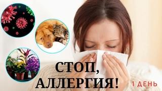 Стоп, Аллергия!  Елена Волгина.