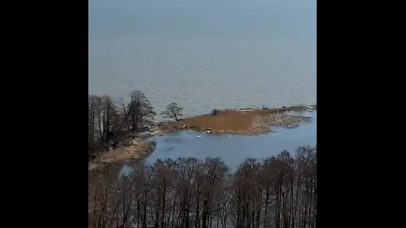 НАБЛЮДАЙ Удивительным образом это лебединое озеро образовалось потому что что то сдвинулось в земле и теперь оно чуть выше