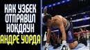 Узбекский боец отправил Андре Уорда в нокдаун