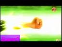 •Совместный клип с Марион Мэри |Осколки Памяти|Леди Баг и Супер Кот•