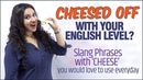 Slang English Words Phrases With 'CHEESE' 🧀For Daily English Conversation | Speak Fluent English