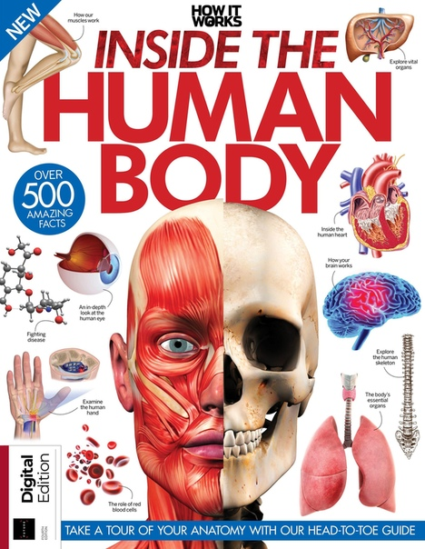 2019-06-21 How It Works - Inside the Human Body