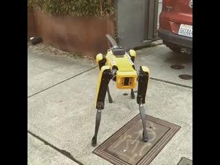 Boston Dynamics Spot виляет хвостом xD