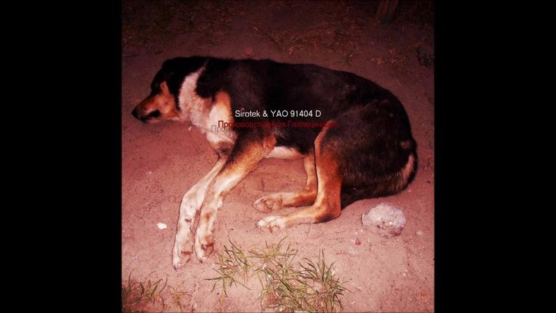 Sirotek YAO 91404 D Производственная Галлюцинация Full Album