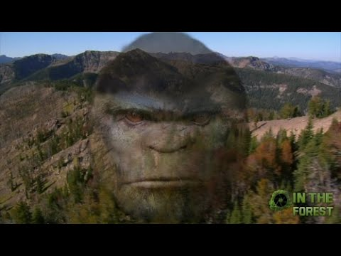 BIGFOOT In The Forest Part 3