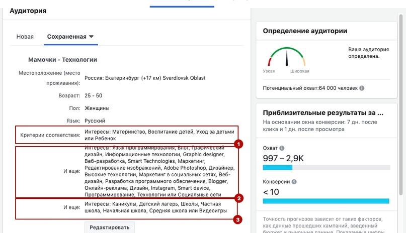 Скриншот настройки аудитории, которая принесла мнооого денег)))