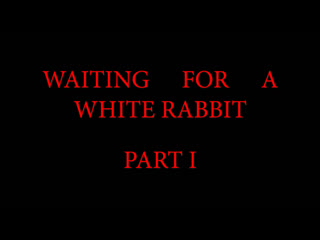 Waiting for a white rabbit, episode one