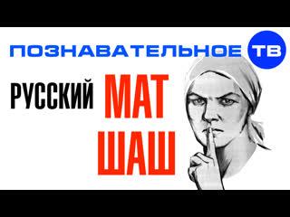 Русский МАТ и русский ШАШ (Познавательное ТВ)