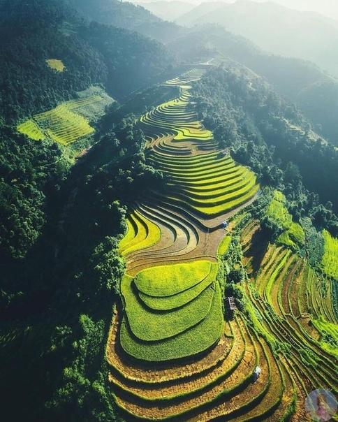 Невероятная природа Вьетнама