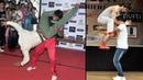 Vidyut Jamwal Teaching Self Defense To Young College Girls