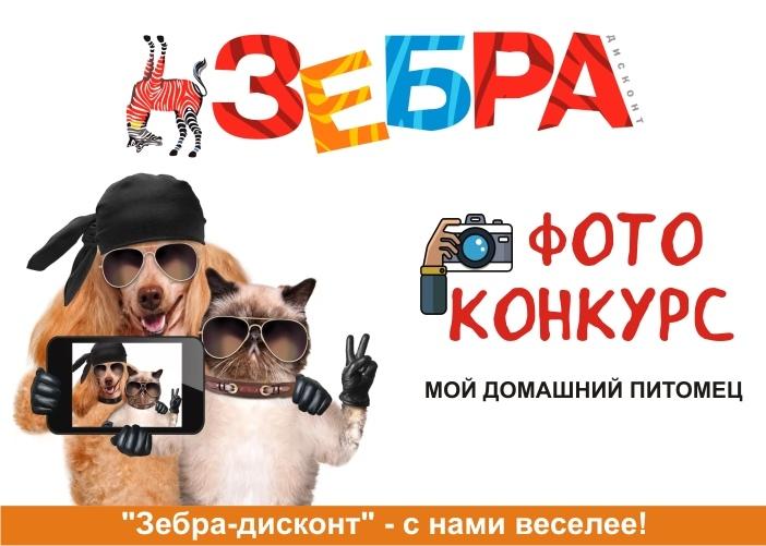 ❗ВНИМАНИЕ! КОНКУРС!    Любите домашних животных? А