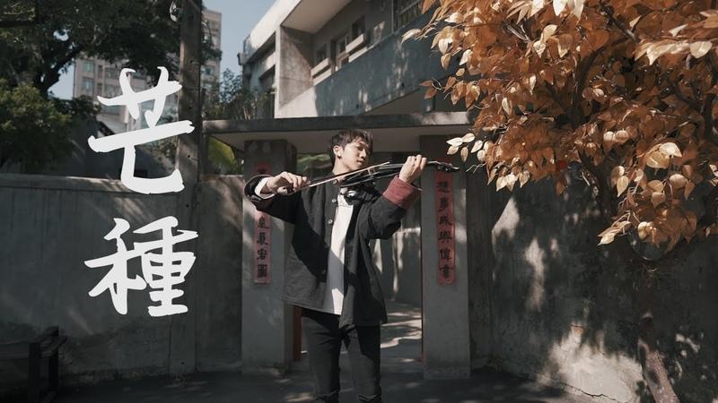 趙方婧《芒種》小提琴版本 Violin Cover by An