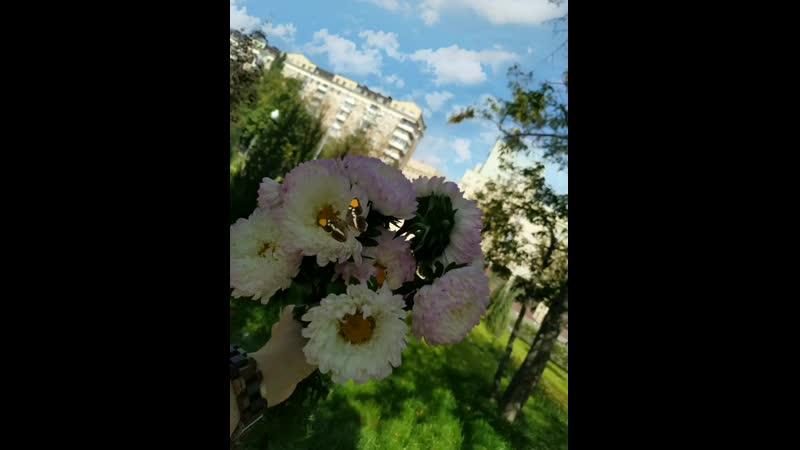 31_08_2019_15_10_07_2260000(0).mp4
