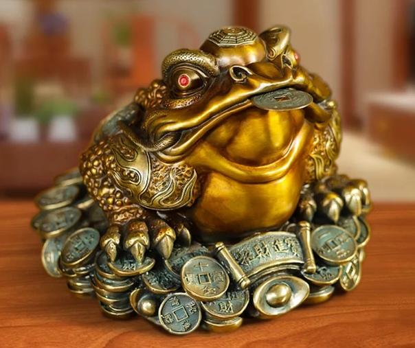 видео студия картинка денежная жаба признался