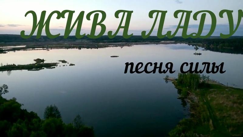 Veraslava | ЖИВА ЛАДУШКА | песня силы | Традиции предков | славянская молитва