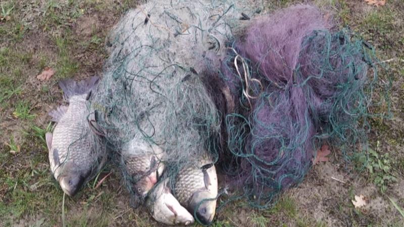 Задержали двух браконьеров из Хойник